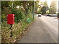 SU0802 : West Moors: postbox № BH22 36, Pinehurst Road by Chris Downer