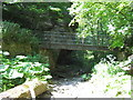 NZ4345 : Hawthorn Burn footbridge by peter robinson