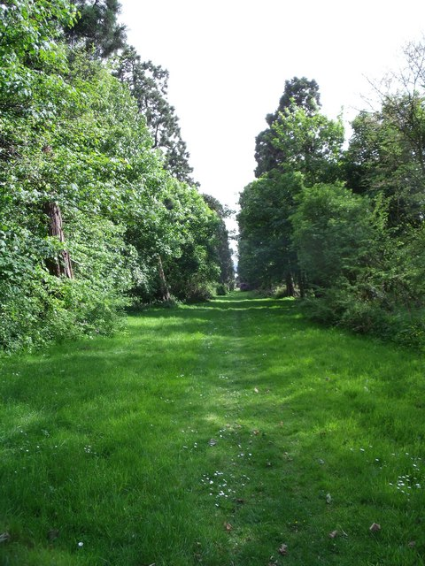 Driveway to Dunimarle Castle