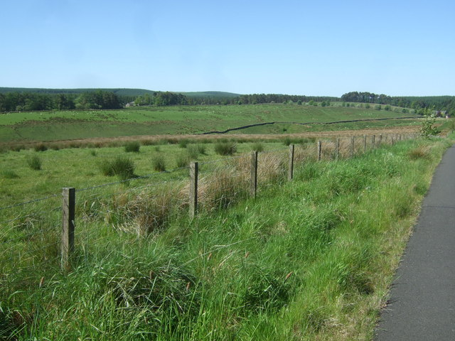 Sustrans Route 68 near Shiela Crag