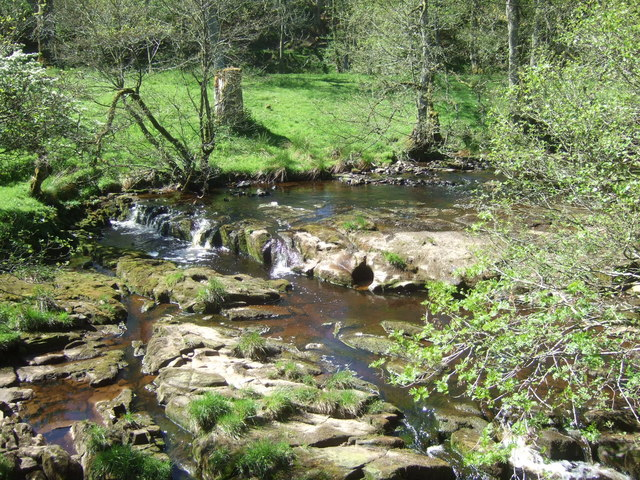 Blacka Burn near Bridge House