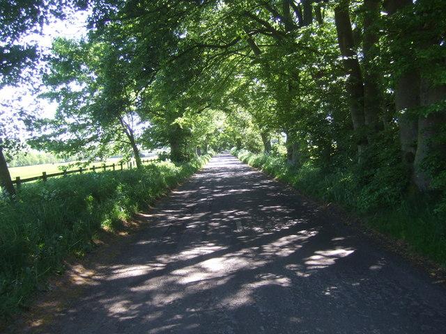 Dunterley to Bellingham