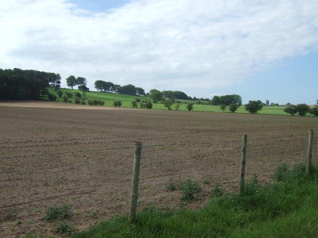 Cotehill Farm