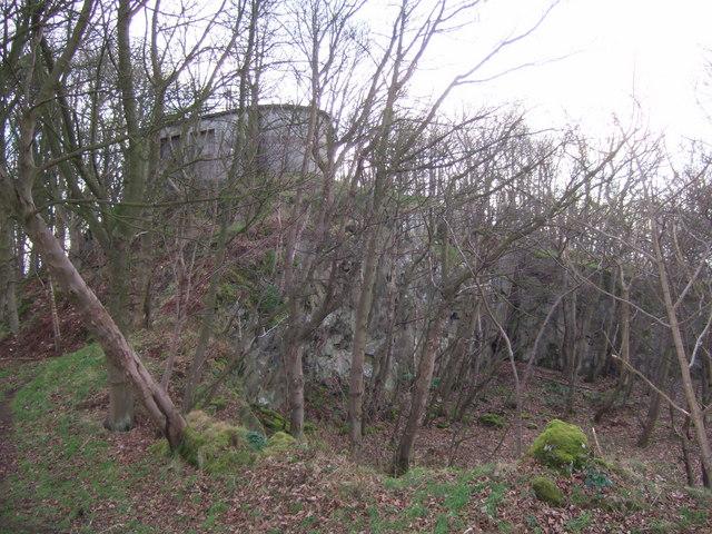 Braefoot Plantation quarry