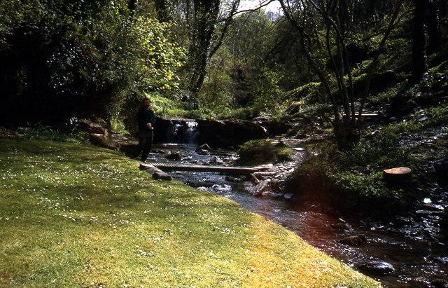 St Nectans Glen at Halgabron Mill