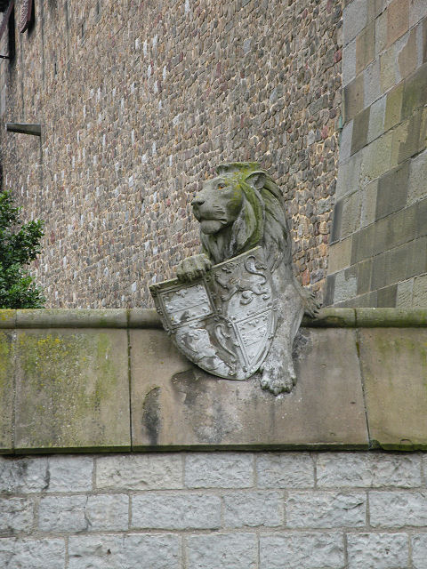 Animal Wall 1 - First Lion