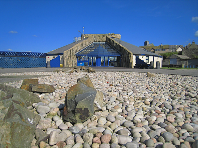 Macduff Aquarium : Macduff: marine aquarium (C) Martyn Gorman :: Geograph Britain and ...