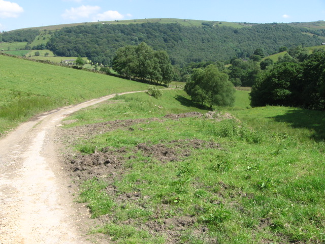 Footpath towards Dauber Bridge