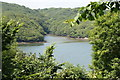 SW7325 : Looking across the Helford River towards the inlet at Merthen Wood by Rod Allday