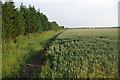TL3663 : Farmland near Lolworth by Stephen McKay