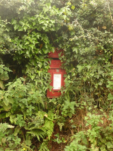 Thorncombe: postbox № TA20 505, School House
