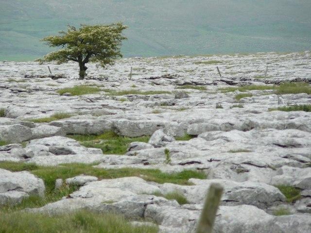 Near Sulber pot Limestone