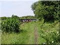 SJ8902 : Shropshire Union Path by Gordon Griffiths