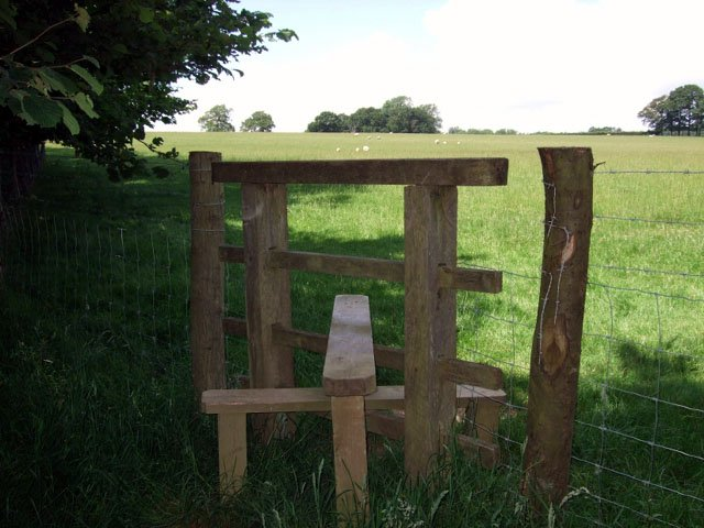 Another stile to cross