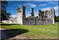 W9573 : Castles of Munster: Castlemartyr, Cork by Mike Searle