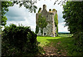 S0823 : Castles of Munster: Loughlohery, Tipperary by Mike Searle