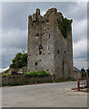 S4470 : Castles of Leinster: Ballyragget, Kilkenny by Mike Searle
