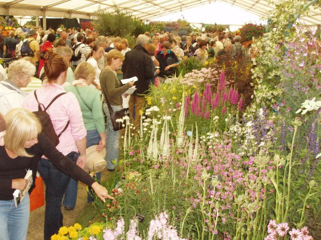 Floral marquee at Hampton Court Flower Show