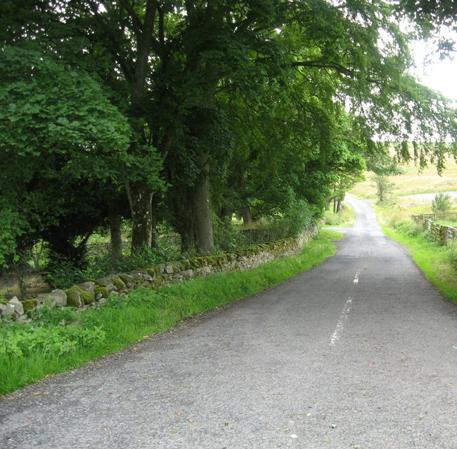 Country road at Hawthornside
