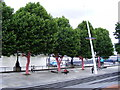 TQ3080 : Polka dotted trees and Festival Pier by PAUL FARMER