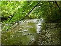 SJ0813 : Afon Efyrnwy / River Vyrnwy by Ian Medcalf