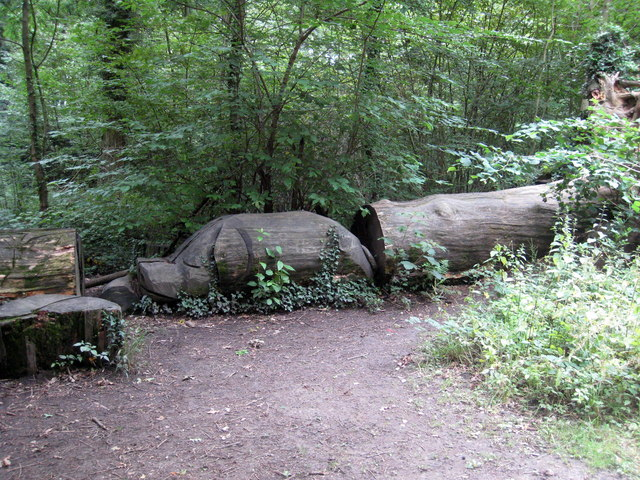 Wood sculpture in clayfield copse rod allday geograph