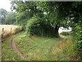 ST1926 : Footpaths on Norton Hillfort by Derek Harper