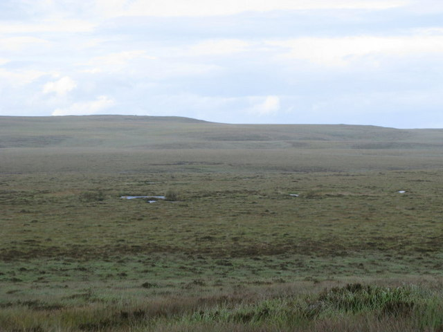 Moorland with puddles