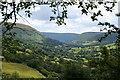 SO2631 : Vale of Ewyas : Week 30