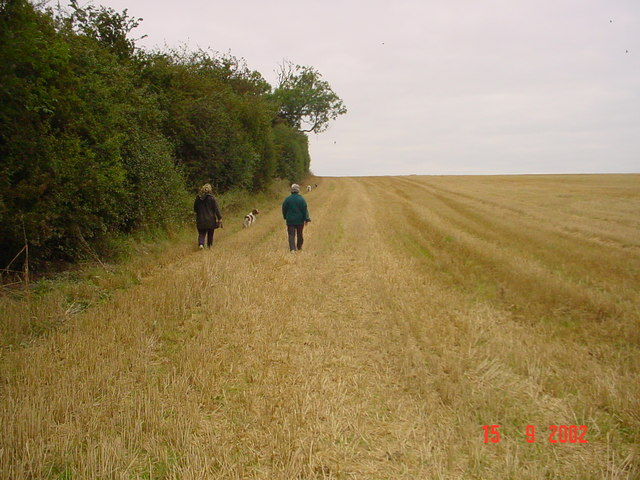 Oadby Fields - Far path