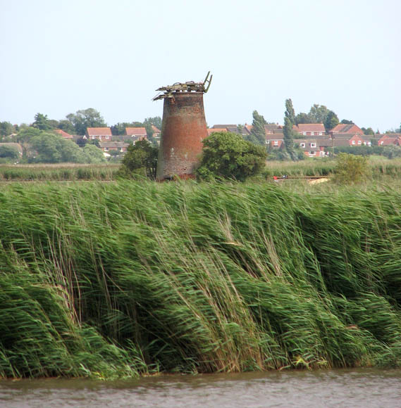 View towards Limpenhoe drainage mill