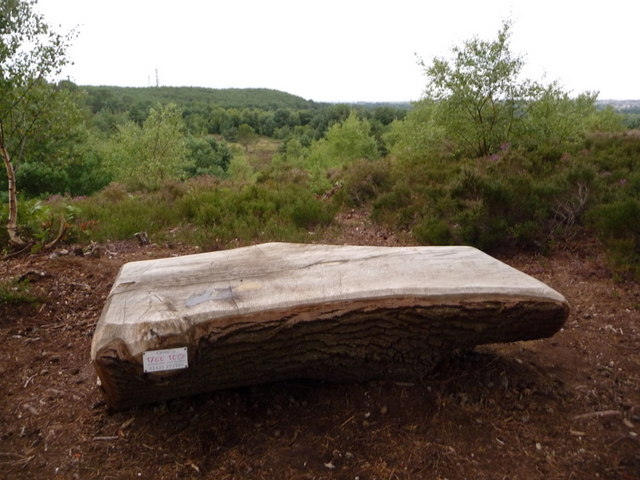 Christchurch Tree Trunk Bench On Chris Downer Geograph Britain And Ireland
