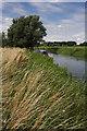 TL6575 : Narrowboat on River Lark near Isleham by Bob Jones