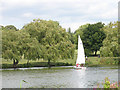 TQ4774 : Danson Park lake by Stephen Craven