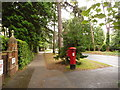 SZ0690 : Branksome: postbox № BH13 9, The Avenue by Chris Downer