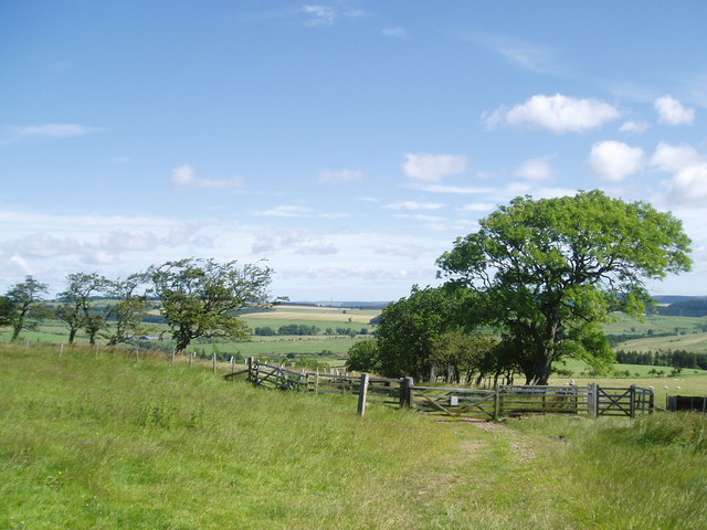 Track from Wether Hill leading to Ingram