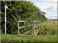 TL6351 : Public footpath, viewed from Common Road by Robert Edwards