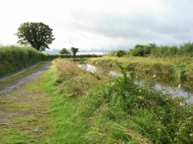 Royal Canal at Ballynabarny, Co. Meath