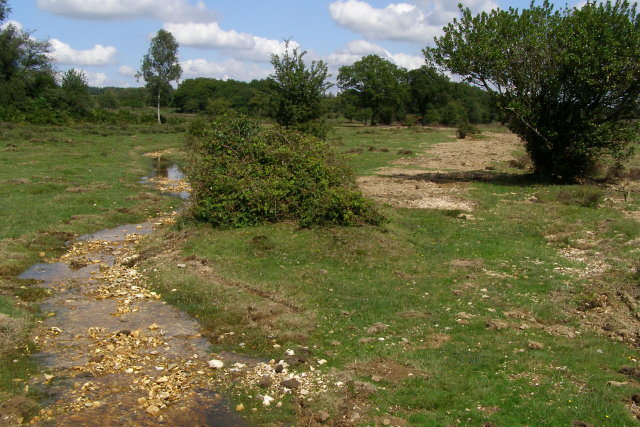 Stream restoration works completed in Howen Bottom, New Forest