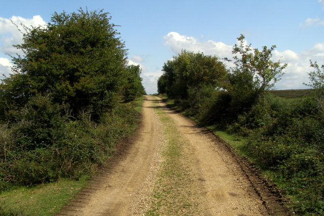 Powder Mill Road, New Forest