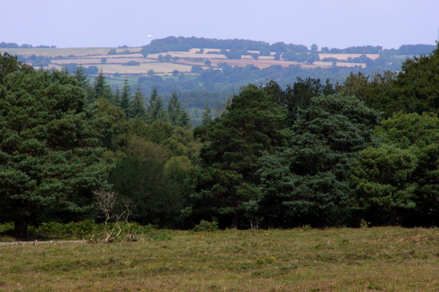 View towards Dean Hill from Powder Mill Road