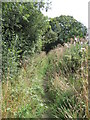 SJ4072 : View of Bridleway by David Quinn