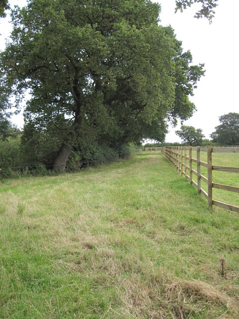 View of Footpath to Wervin Road
