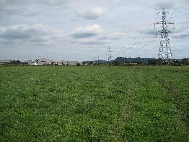Farmland and Footpath near Elton