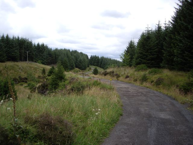 The Weavers' Trail through Whitelee Forest