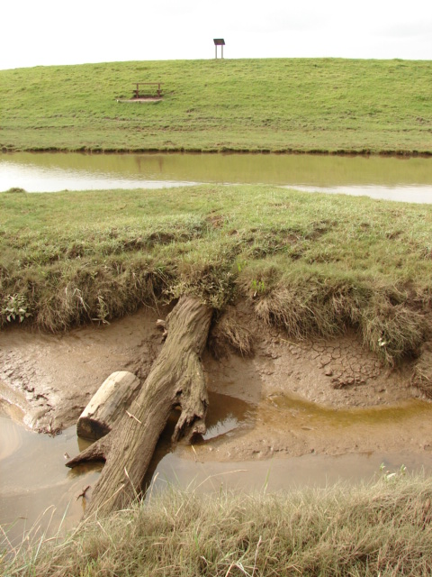 a muddy creek, part of an obstacle course
