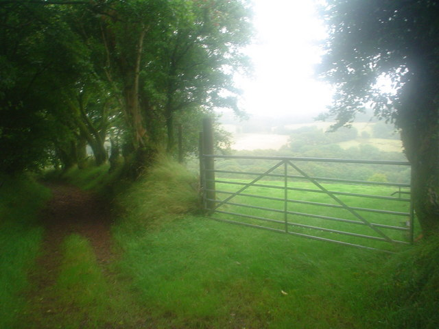 Ancient lane through fields and woods