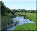 SN6660 : The Afon Teifi near Tregaron, Ceredigion by Roger  Kidd