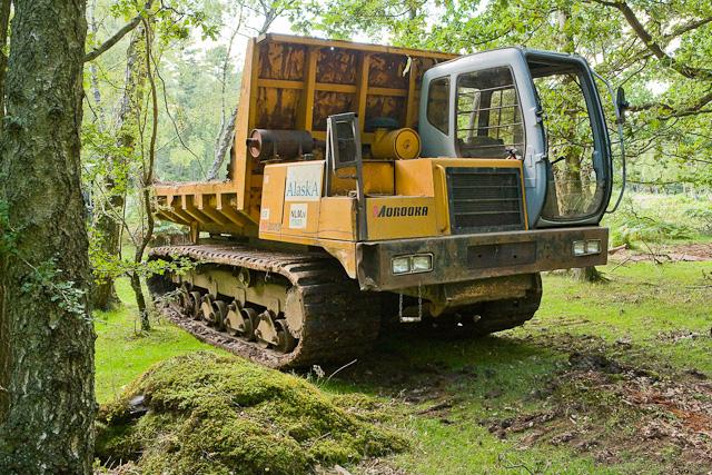 Warwickslade Cutting: dumper truck