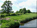 SJ8909 : Farmland by the River Penk, near Brewood, Staffordshire by Roger  Kidd